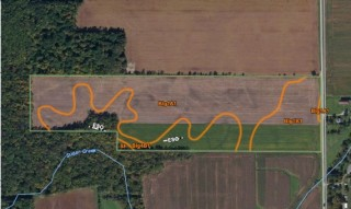 38.34 Acres +/- For Sale