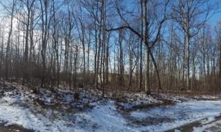 .49 Acre Lot - Upper Sandusky