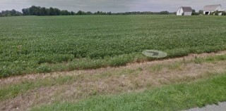 61.32 ACRES OF PRIME, PRODUCTIVE FARMLAND FOR AUCTION