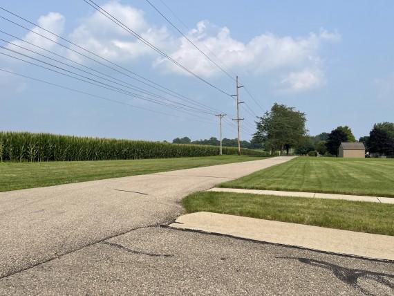 Bike path looking at crops on bidding lot 1